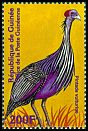 Cl: Vulturine Guineafowl (Acryllium vulturinum) <<Pintade vulturine>> (Out of range)  new (2001)