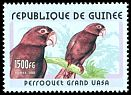 Cl: Vasa Parrot (Coracopsis vasa) <<Perroquet grand vasa>> (Out of range)  new (2001)