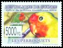 Cl: Red-headed Lovebird (Agapornis pullarius) new (2010)  [6/56]