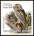 Cl: Little Owl (Athene noctua)(Out of range)  new (2002)
