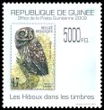 Cl: Little Owl (Athene noctua)(Out of range)  new (2010)  [6/53]