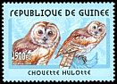 Cl: Tawny Owl (Strix aluco) <<Chouette hulotte>> (Out of range)  new (2001)