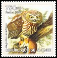 Cl: Northern Saw-whet Owl (Aegolius acadicus)(Out of range)  new (2002)
