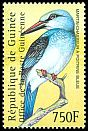 Cl: Blue-breasted Kingfisher (Halcyon malimbica) <<Martin-chasseur &agrave; poitrine bleue>>  new (2001)