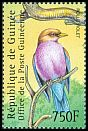 Cl: Broad-billed Roller (Eurystomus glaucurus) <<Rolle violet>>  new (2001)