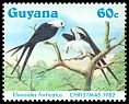 Cl: Swallow-tailed Kite (Elanoides forficatus) SG 1425 (1984) 270