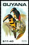 Cl: Collared Aracari (Pteroglossus torquatus)(Out of range)  SG 2775 (1990)