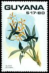 Cl: Black Jacobin (Florisuga fuscus)(Out of range and no other stamp)  SG 2780 (1990)