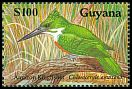 Cl: Amazon Kingfisher (Chloroceryle amazona) SG 2680b (1990)