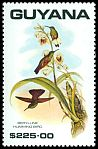 Cl: Berylline Hummingbird (Saucerottia beryllina)(Out of range)  SG 2788 (1990)