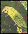 Cl: Yellow-faced Parrot (Amazona xanthops)(Out of range)  SG 2975 (1990)