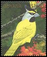 Cl: Yellow Cardinal (Gubernatrix cristata)(Out of range)  SG 2980 (1990)