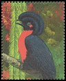 Cl: Bare-necked Umbrellabird (Cephalopterus glabricollis)(Out of range and no other stamp)  SG 2981 (1990)