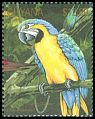 Cl: Blue-and-yellow Macaw (Ara ararauna)(Repeat for this country)  SG 3000 (1990)