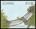 Cl: Andean Condor (Vultur gryphus)(Out of range)  SG 3028 (1990)