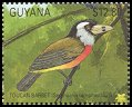 Cl: Toucan Barbet (Semnornis ramphastinus)(Out of range)  SG 3033 (1990)