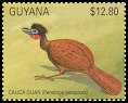 Cl: Cauca Guan (Penelope perspicax)(Out of range and no other stamp)  SG 3046 (1990)