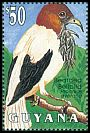 Cl: Bearded Bellbird (Procnias averano)(Out of range and no other stamp)  SG 3486 (1993)
