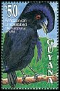Cl: Amazonian Umbrellabird (Cephalopterus ornatus)(Repeat for this country)  SG 3487 (1993)