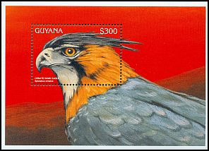 Cl: Ornate Hawk-Eagle (Spizaetus ornatus) SG 4738b (1996)