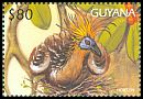 Cl: Hoatzin (Opisthocomus hoazin)(Repeat for this country)  SG 5125 (1997)