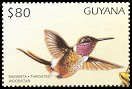 Cl: Magenta-throated Woodstar (Calliphlox bryantae)(Out of range and no other stamp)  SG 5127 (1997)
