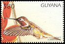 Cl: Anna's Hummingbird (Calypte anna)(Out of range and no other stamp)  SG 5128 (1997)