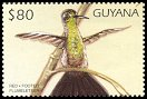 Cl: Bronze-tailed Plumeleteer (Chalybura urochrysia)(Out of range and no other stamp)  SG 5131 (1997)
