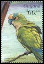 Cl: Peach-fronted Parakeet (Aratinga aurea)(Out of range)  SG 5653 (1999)
