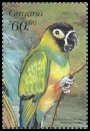 Cl: Nanday Parakeet (Nandayus nenday)(Out of range and no other stamp)  SG 5658 (1999)