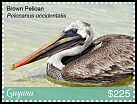 Cl: Brown Pelican (Pelecanus occidentalis)(I do not have this stamp)  new (2018)
