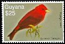Cl: Summer Tanager (Piranga rubra) SG 6602 (2007)
