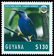 Cl: Purple Honeycreeper (Cyanerpes caeruleus)(Repeat for this country)  new (2014)