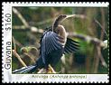 Cl: Anhinga (Anhinga anhinga)(Repeat for this country)  SG 6782a (2012)