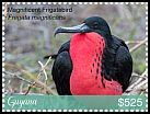 Cl: Magnificent Frigatebird (Fregata magnificens)(I do not have this stamp)  new (2018)