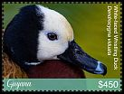 Cl: White-faced Whistling-Duck (Dendrocygna viduata)(I do not have this stamp)  new (2018)