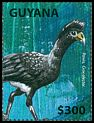 Cl: Black Curassow (Crax alector) new (2014)