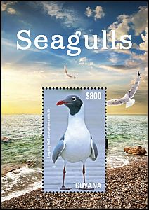 Cl: Laughing Gull (Larus atricilla)(I do not have this stamp)  new (2015)