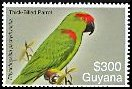 Cl: Thick-billed Parrot (Rhynchopsitta pachyrhyncha)(Out of range)  SG 6609 (2007)  [4/16]