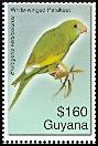 Cl: Canary-winged Parakeet (Brotogeris versicolurus)(Out of range and no other stamp)  SG 6607 (2007)  [4/16]