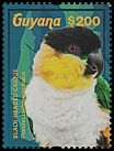 Cl: Black-headed Parrot (Pionites melanocephala)(I do not have this stamp)  new (2015)