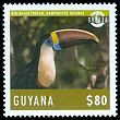 Cl: Red-billed Toucan (Ramphastos tucanus)(Repeat for this country)  new (2014)