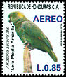 Cl: Yellow-naped Parrot (Amazona auropalliata) <<Lora Meijilla Amarilla>>  SG 1069 (1987) 225