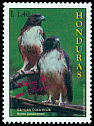 Cl: Red-tailed Hawk (Buteo jamaicensis) <<Gavilan cola roja>>  SG 1365 (1997) 15