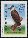 Cl: Black-and-white Hawk-Eagle (Spizastur melanoleucus) SG 1742c (2004)