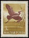 Cl: Glossy Ibis (Plegadis falcinellus) <<Batla>> (Repeat for this country)  SG 1581 (1959) 100