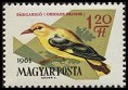 Cl: Eurasian Golden Oriole (Oriolus oriolus) <<S&aacute;rgarig&oacute;>> (Repeat for this country)  SG 1785 (1961) 10