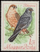 Cl: Red-footed Falcon (Falco vespertinus) <<K&eacute;k v&eacute;rcse>> (Repeat for this country)  SG 2349 (1968) 15