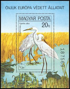 Cl: Great Egret (Ardea alba) <<Nagykocsag>> (Repeat for this country)  SG 3346 (1980) 475