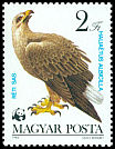Cl: White-tailed Eagle (Haliaeetus albicilla) <<R&eacute;ti sas>> (Repeat for this country)  SG 3509 (1983) 50